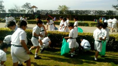 Swachh Bharat Abhiyan and Tree Plantation