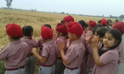 Visit to wheat field